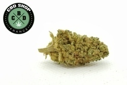 CBD Shop France - Berry 2 - small