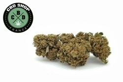 CBD Shop France - Black Domina - small