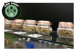 CBD Shop France - Pack Decouverte 1 b - small